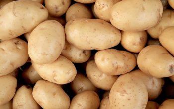 Do polévky nebo na bramboráky